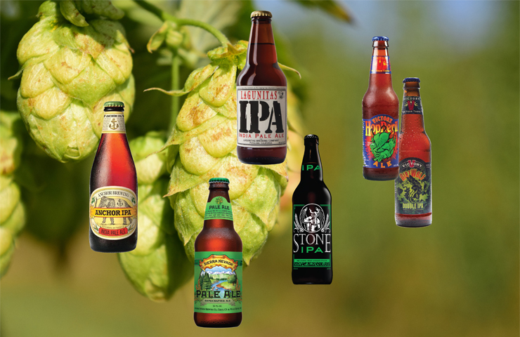 Hops, A World Obsession - County Lines Online